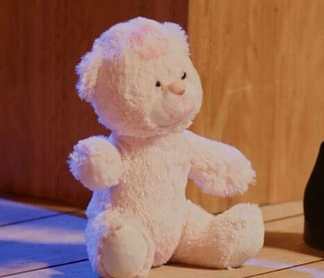 rosita the bear